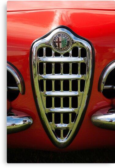 Alfa Romeo Giulia Grille 1 by Flo Smith