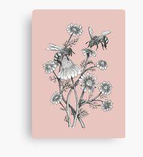 Lienzo las abejas y la manzanilla en el fondo de color rosa polvoriento