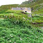 Hebridean Farm, Western Isles, Scotland by BlueMoonRose