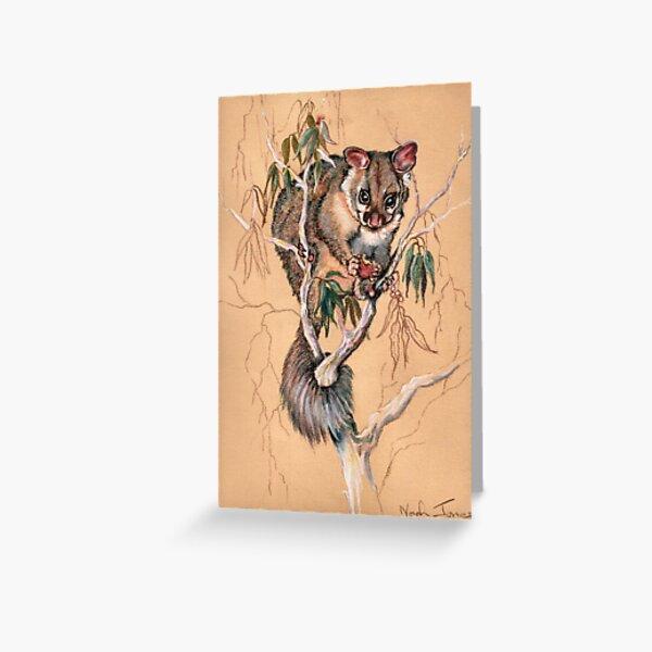 Brushtail Possum Greeting Card