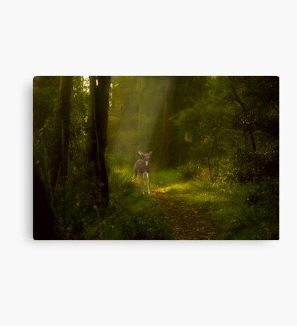 Bambi's visit Canvas Print
