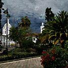 San Sebastian Park - Van Gogh Style by Al Bourassa