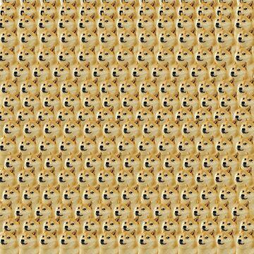 Doge everywhere by qweriz