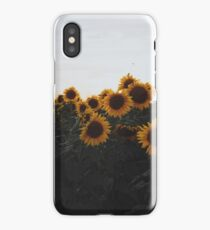 Field of Sunflowers 2 iPhone Case