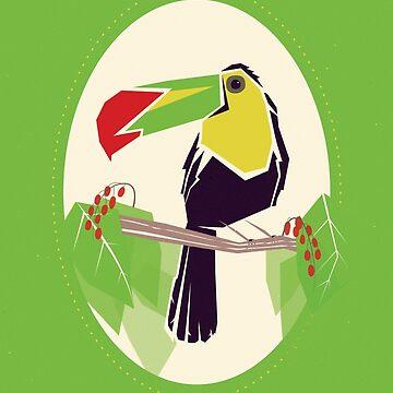 Toucan by MisterKeet