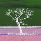 Lonely tree by vampibunni