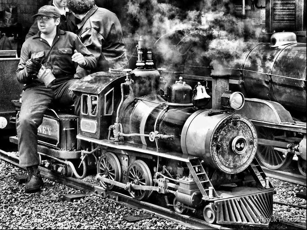 Mini Railway Rhyl HDR by Dfilmuk Photos