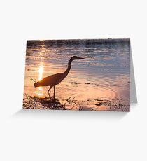 Silhouette of a Grey Gray Heron (Ardea cinerea) at sunset Greeting Card