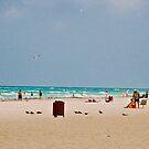 Gulf Coast by photorolandi