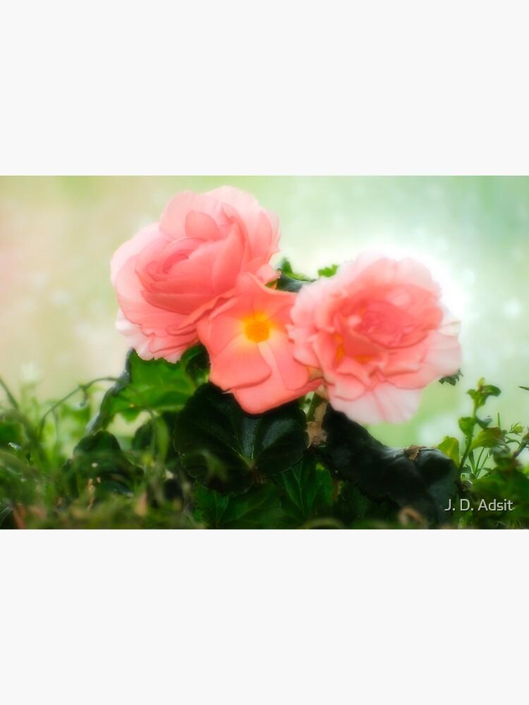 The Intimate Garden by adsitprojectpro