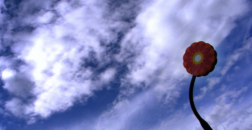 flower in the sky by Rita Iszlai