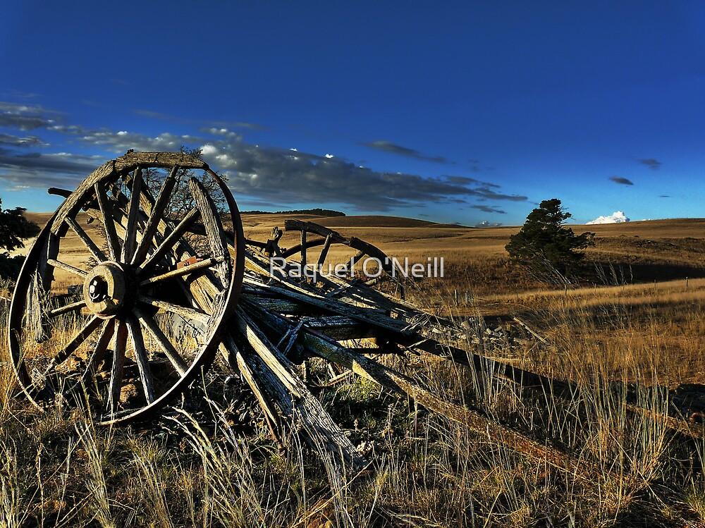 The Wagon by Raquel O'Neill