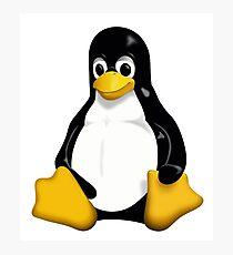 linux penguin cute Photographic Print
