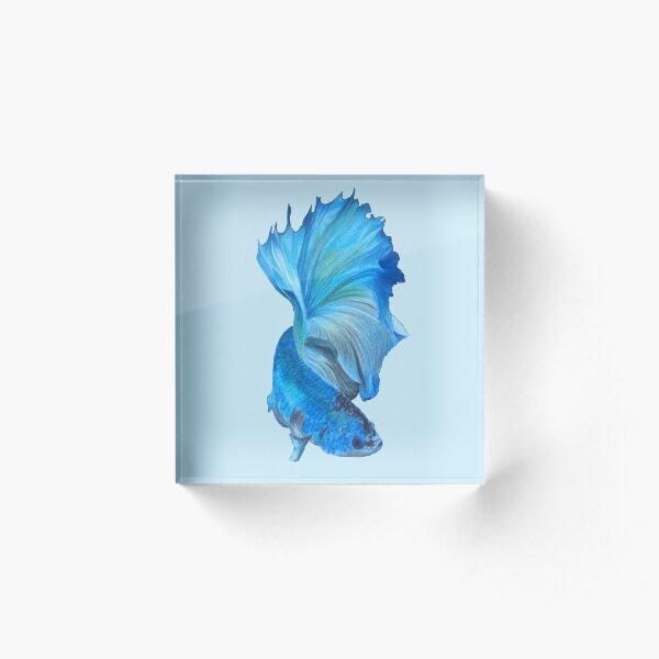 Blue Beta Acrylic Block