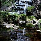 Sheok Falls #3 by colm