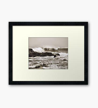Foggy Day at Pescadero Framed Print