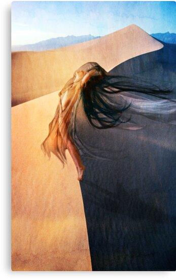 Senza Catene by Aimee Stewart