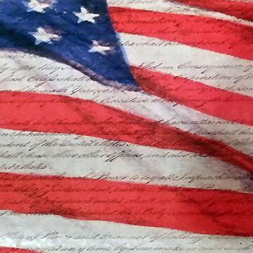 American Flag  by fredseghetti