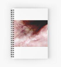 Guts Spiral Notebook