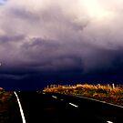 Dunedin by bouche