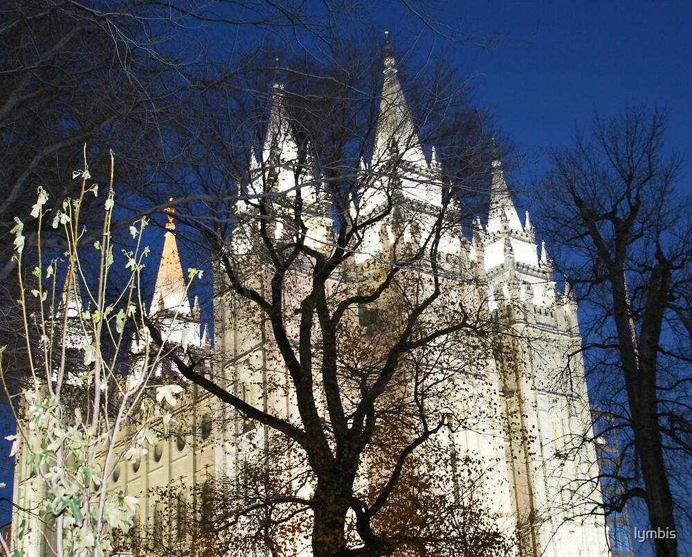 Salt Lake Temple at Night by Lynn Stratton