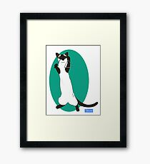 Triangle Playing Cat Framed Print