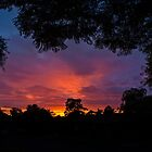 Sunrise in Kardinya, W.A. by Sandra Chung