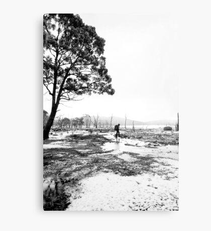 Bushwalking @ Lake King William Metal Print