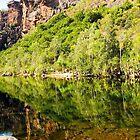 Reflections over Jim Jim Creek - Kakadu National Park, Australia by Lexa Harpell
