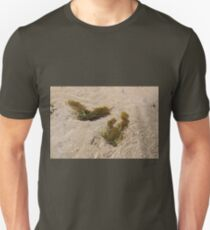 Seaweed in the Shallows T-Shirt