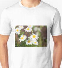 Sunny chamomiles Unisex T-Shirt