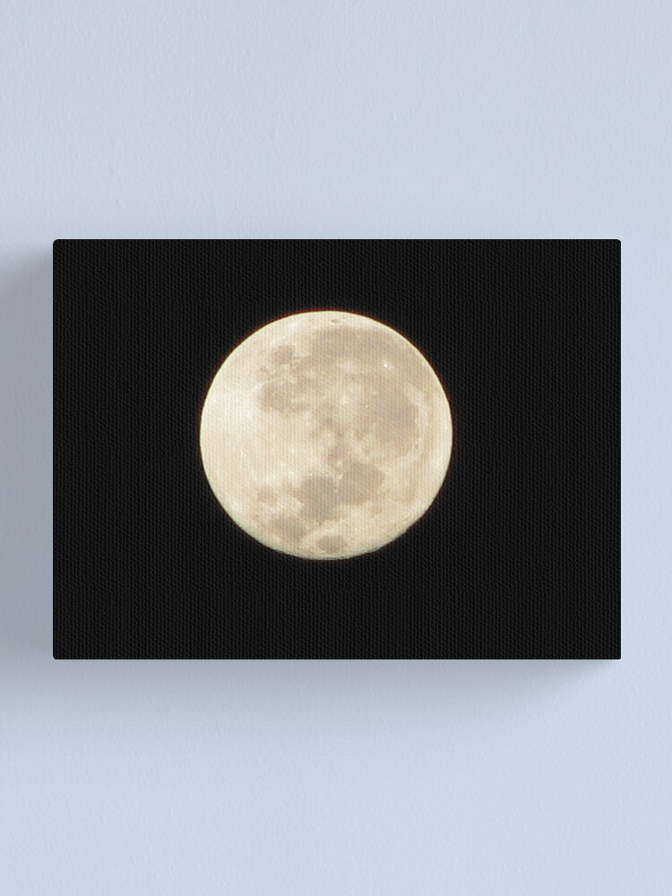 Alternate view of Moon in Taurus Canvas Print