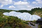The Eden Project by Steven Guy