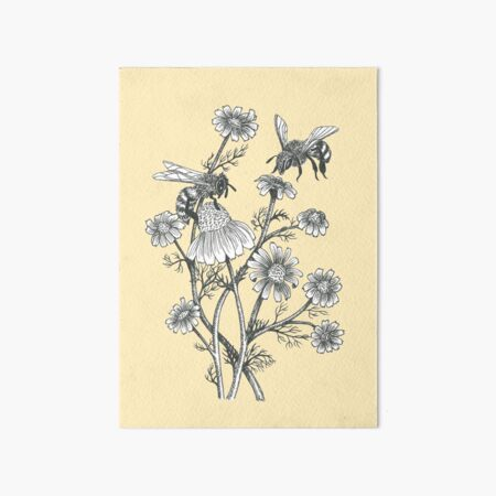 bees and chamomile on honey background  Art Board Print
