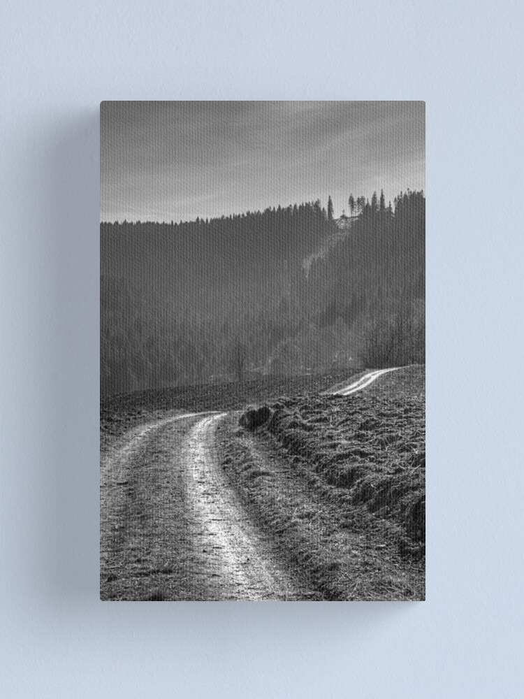 Alternate view of Road Canvas Print
