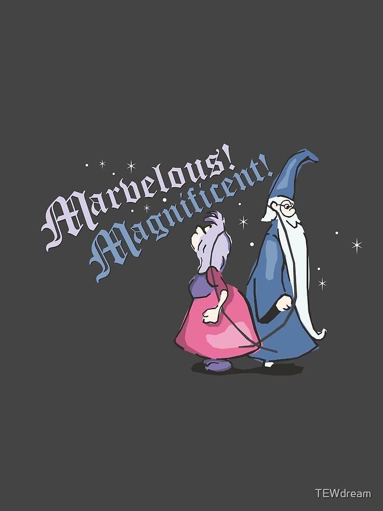 Zauberduell von TEWdream