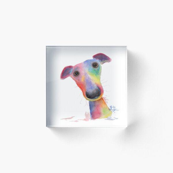 WHiPPeT GReYHouND DOG 'HANK' BY SHIRLEY MACARTHUR Acrylic Block