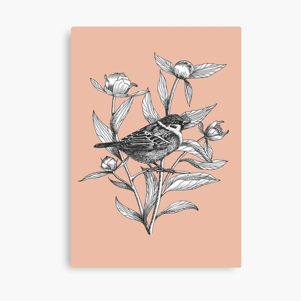 ink sparrow and peonies on terracotta background Canvas Print