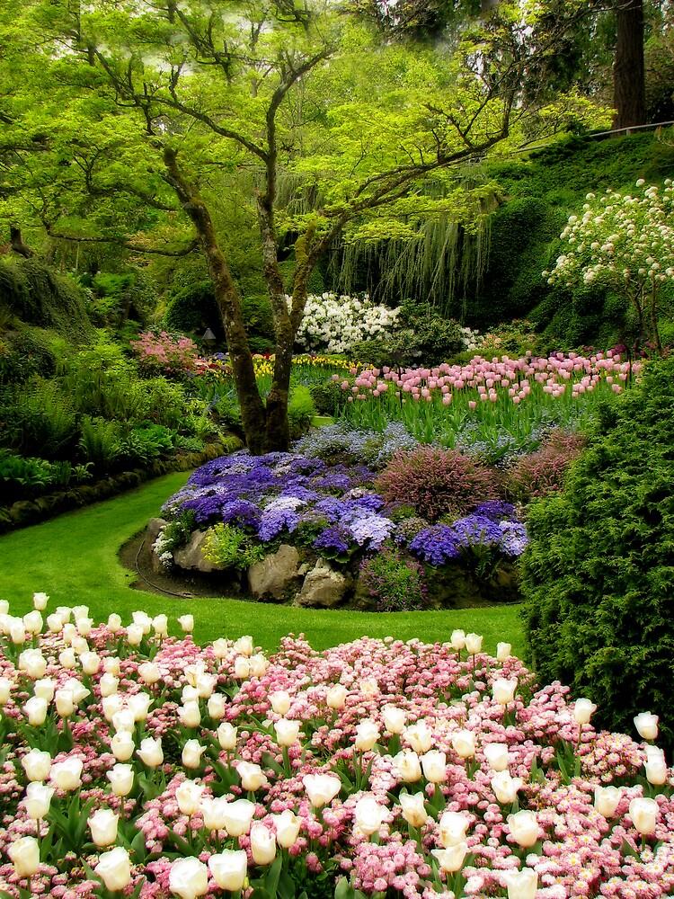 Sunken Garden by Rebecca Cruz