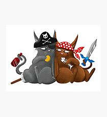 Some mighty fine Seafaring Pirate cats Photographic Print