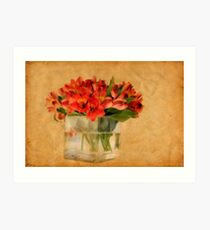 Cultivated Beauty Art Print