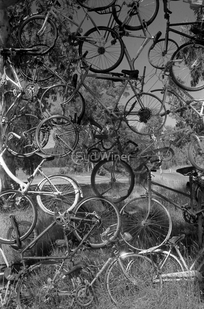 Bicycle sculpture, Seldom Seen by Syd Winer