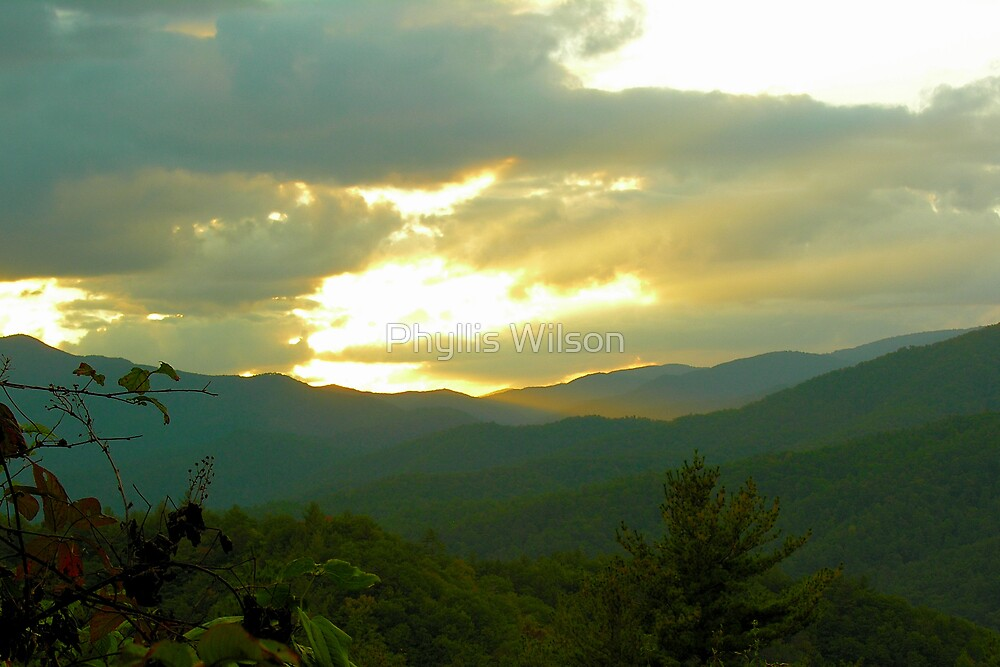 Smoky Mountain Gold by Phyllis Wilson