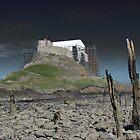 Scaffolding, Lindisfarne Castle by wiggyofipswich
