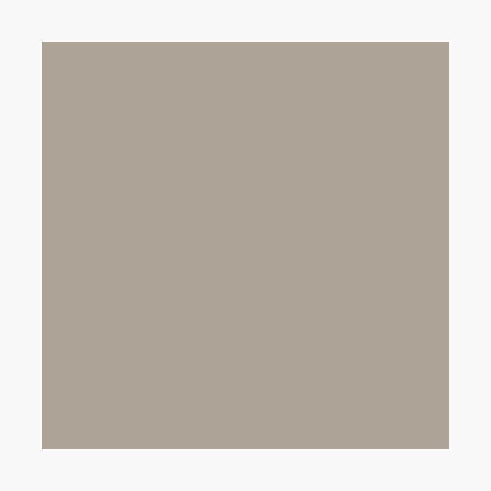 Couleur Pantone De L Année 2017 poster « pure cachemire / argent rapide / toner gris solide