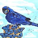 « Perroquet et papillons » par cindybarillet