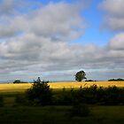 Ireland landscape by annalisa bianchetti