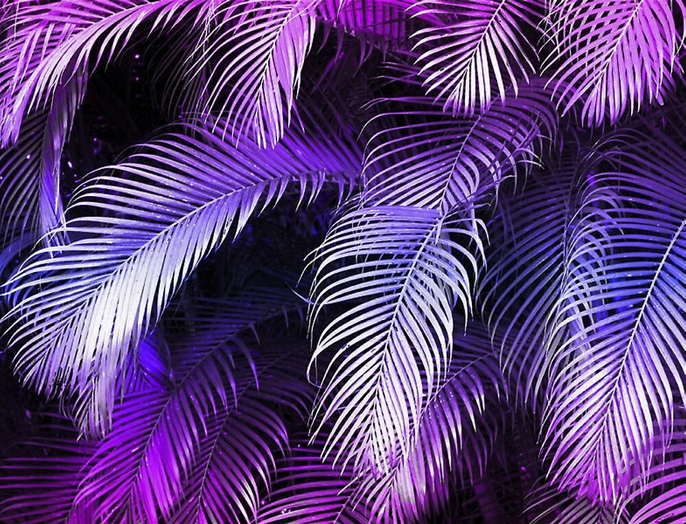 Quot Tropical Purple Palm Leaves Quot By Havendesign Redbubble