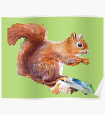Red Squirrel on a tree stump Poster