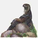 The Majestic Otter by ZHField